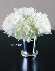 BRIDAL-WHITE-JULEP