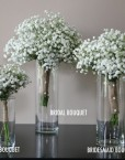 Baby-Breath-Group