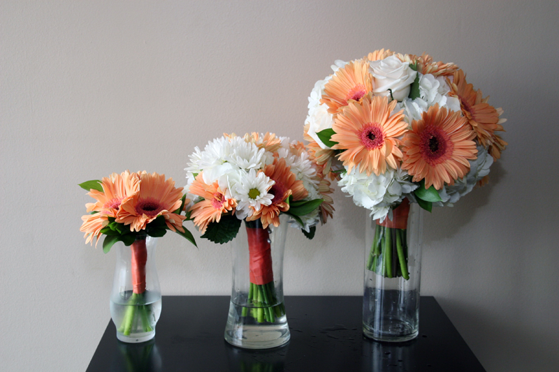 GERBERA-COLLECTION