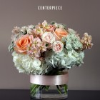 PEACH-CENTERPIECE